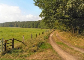 Federow,Rad-und Wanderwege 107.jpg