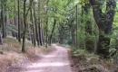 FederowRad-und-Wanderwege-258